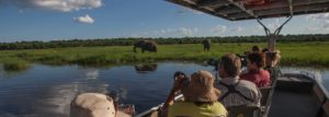 The Best of Chobe Safari - 7 Days in Chobe National Park