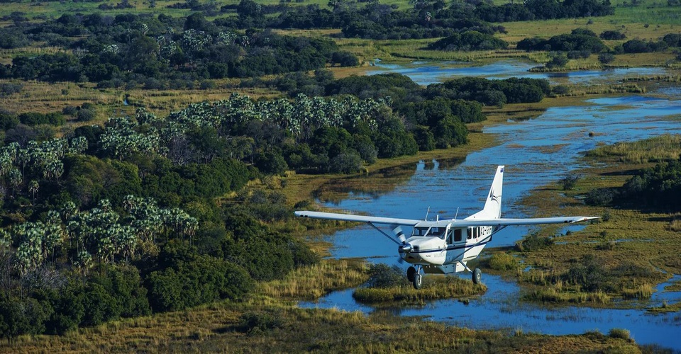wings over botswana safari