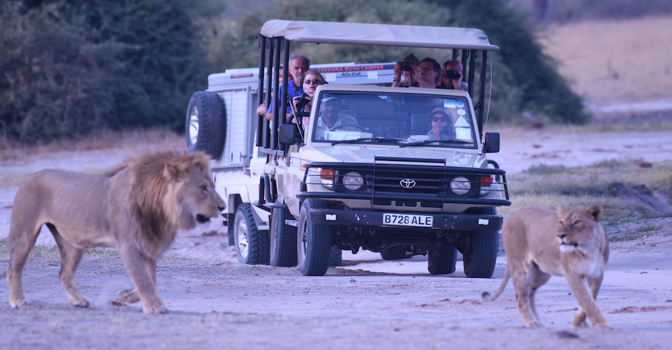 Botswana Adventure Safari