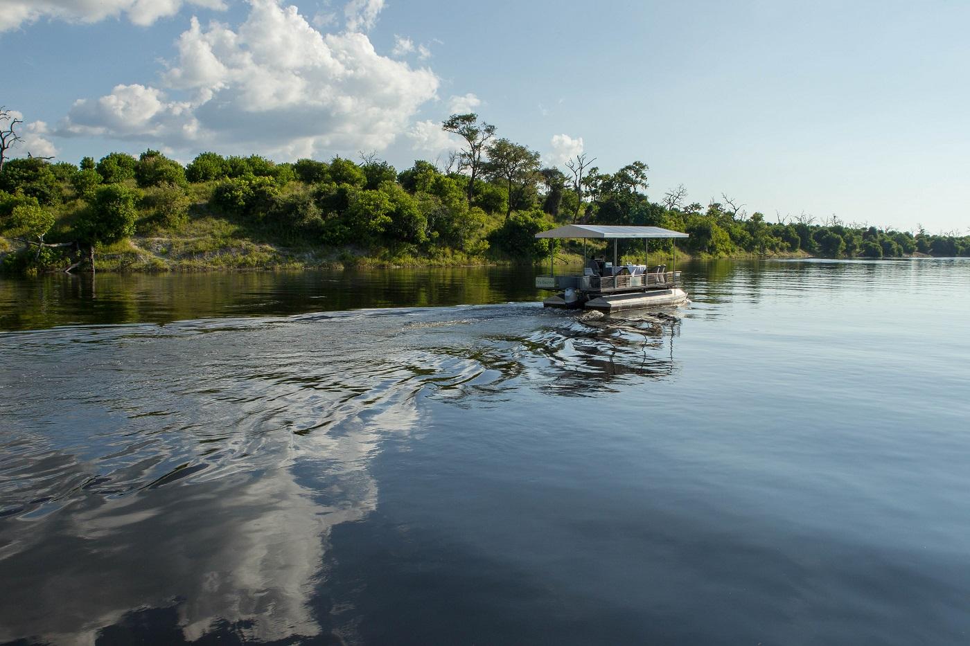Cruise down the Chobe River