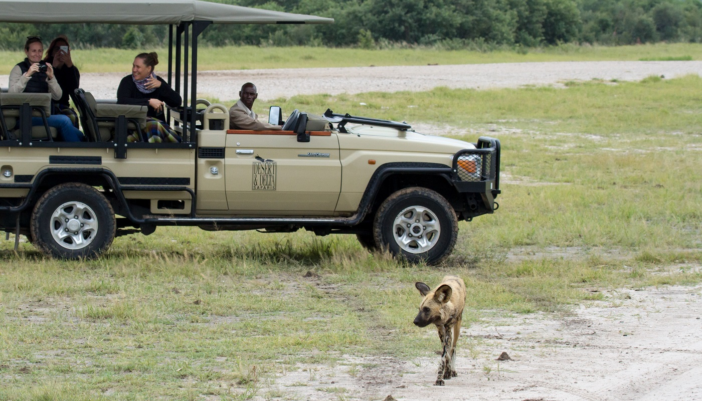 Savute Safari Lodge Game Drive