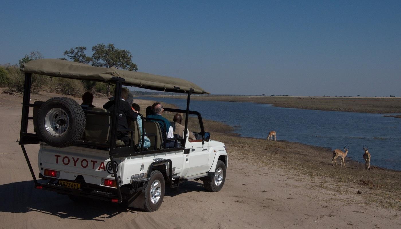 See lots of African wildlife in Botswana